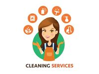 Lesley's domestic Cleaning Services