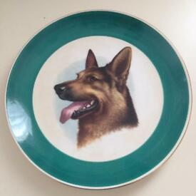 German shepherd plate.