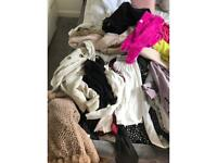 Ladies Clothes size 8-12