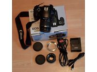 Canon EOS 1100D + 18-55mm Lens Kit + Olympus OM 50mm f1.8 Lens with adaptor