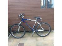 Saracen N-Zyme mens mountain bike