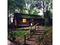 2 Bed Woodland Cottage available for rent