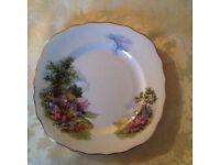 Total of nine pretty bone China plates in Royal vale design
