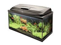 Large Fish Tank 98 Litres Complete Aquarium Set up with Heater Filter & Light