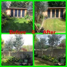 Tree surgeon and gardening London