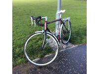 REVOLUTION AUDAX mint condition (medium size) with added back rack and upgraded wheels.