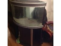 Large corner fish tank solid heavy will need two strong people to carry