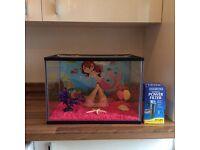 Kids 24l Fish Tank inc. Accessories