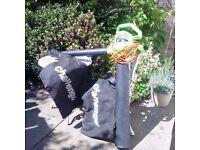 Challenge Leaf Vacuum & Mulcher and Leaf Blower
