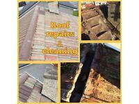 Roof Repairs & Guttering