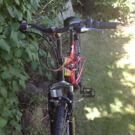 Two bikes for sale one junior one adult