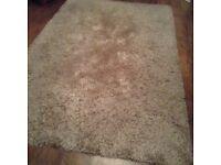 Large champagne rug