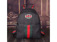 Mens Luxury backpac