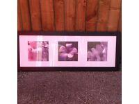 Purple flower print/picture