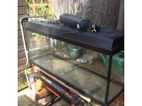 4ft aquarium with heater light and pump