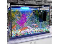 26L Glass Aquarium Fish Tank Starter Kit Set - BRAND NEW Air Filter Pump Net Stone LED Light