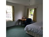 Large double room for rent in listed house with bus outside