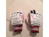 Woodworm pioneer batting gloves
