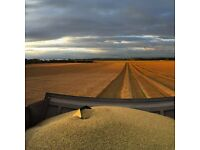 Harvest job on East lothian arable farm