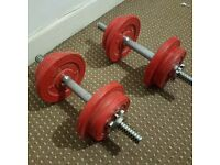 2 x Dumbbells/Free Weights