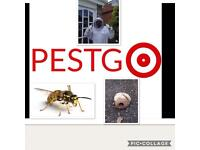 Pestgo , pest control , Rats , Wasps, Ants ,mouse, mice, vermin , house ,commercial ,bed bugs ,