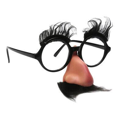 Lustige Schwarze Schnurrbart Augenbraue Große Nase Unisex Halloween Kostüm