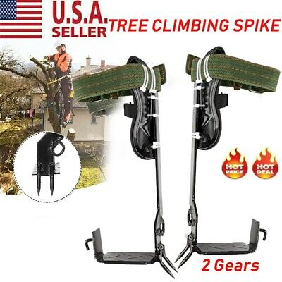 Tree Climbing Spike 2 Gears Set Safety Belt Lanyard Rope Rescue Adjustable Belt