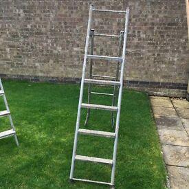 Step ladder or loft ladder