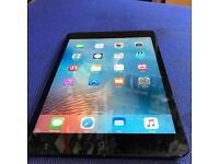 Ipad Mini 16 GiG Wifi