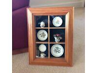 PORTMEIRION framed display case ( BOTANIC GARDEN. )
