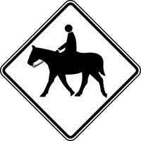 Looking for horse farms for riding and trail rides