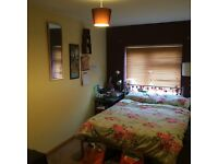 lovely room in Cowley £ 530pm all bills included