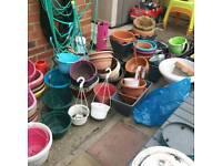 Hanging basket and tubs joblot