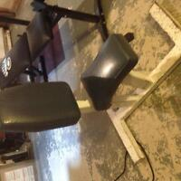 Seated Weight Bench