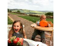 Au Pair needed in the countryside