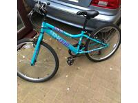 Girls Apollo mountain bike - free local delivery