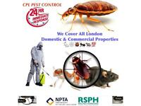 Pest Control Mice Rat Bedbugs Wasps Ants Mouse Removal extermination