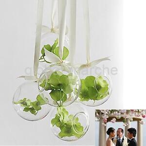 Vase suspendre en verre transparent boule pour plantes fleurs d coration ebay - Boule en verre pour plante ...