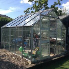 10ft 5inches X 8ft 5inches Aluminium green house with shelving and concrete foundations