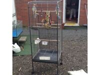 For sale parrot cage or canary