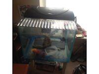 Large cube fish tank
