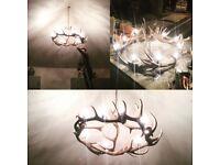 Antler chandelier, light, ceiling, light, stag