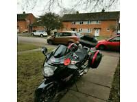 Honda blackbird 1100 XX