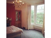 Looking for friendly housemate to fill double room in Southville!