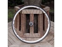 700C Omega Road Bike Front Wheel