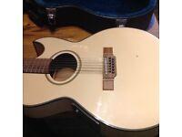 Washburn 12 string Accoustic electric guitar