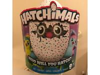 Hatchimal pengualas teal brand new, proof of purchase x