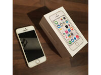 iPhone 5s Space Gold (unlocked)