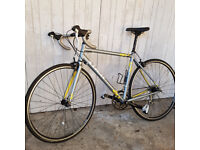 Trek Lexa C 2013 Women's Road Bike in very good condition