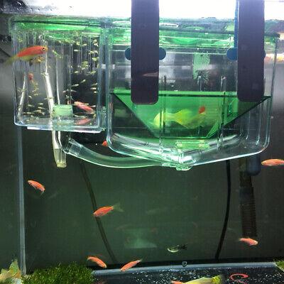 Aquarium Fisch Brüterei Box Isolation Box Ablaichkasten Neu
